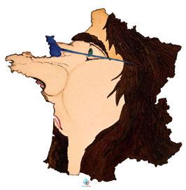 """Licence d'utilisation de l'image """"France"""" SIDHERIA"""