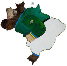 """Licence d'utilisation de l'image """"Brésil"""" SIDHERIA"""