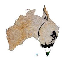 "Licence d'utilisation de l'image ""Australie Tasmanie"" SIDHERIA"
