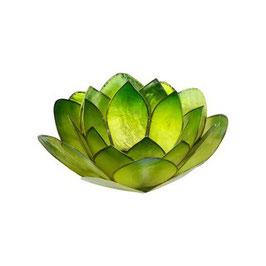 "Teelichthalter ""Lotus Grün"""