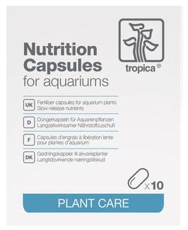 Düngekapseln NPK + Mikronährstoffe