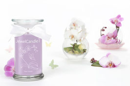 Jewel Candle Thai Orchid