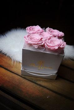Flowerbox Carré 5 Roses