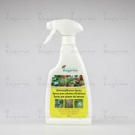 Zimmerpflanzen Spray