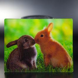 Artikel-Nr. 017E - Kühlschrankmagnet Motiv Kaninchen