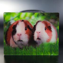 Artikel-Nr. 017F - Kühlschrankmagnet Motiv Meerschweinchen