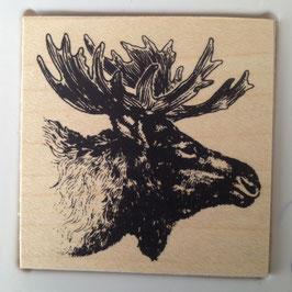 Artikel-Nr. 036P  - Stempel Wildlife Elch