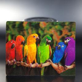 Artikel-Nr. 017A - Kühlschrankmagnet Motiv Papageien