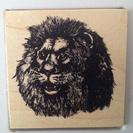 Artikel-Nr. 036D  - Stempel Wildlife Löwe