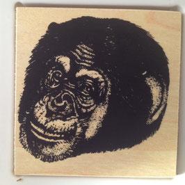 Artikel-Nr. 036K  - Stempel Wildlife Schimpanse