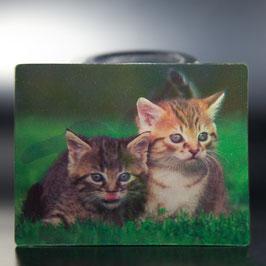 Artikel-Nr. 017C - Kühlschrankmagnet Motiv Katzen