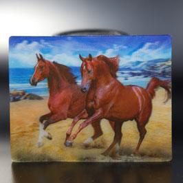 Artikel-Nr. 017B - Kühlschrankmagnet Motiv Pferde