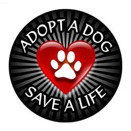 Artikel-Nr. 014P - Aufkleber Motiv adopt a dog save a life