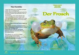 Natur Kamishibai Bildkarten Der Frosch