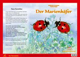 Natur Kamishibai Bildkarten Der Marienkäfer