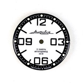 Dial 816 VOSTOK AMPHIBIA