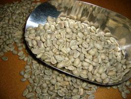 Rohkaffee LEKEMPTI, Kaffee aus Äthiopien, Origine Certifiée Terra Kahwa
