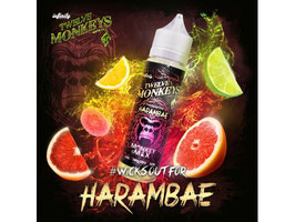 Twelve Monkeys - Harambae 0 mg/ml 50ml