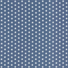 Jersey Sterne VERENA rauchblau (Meterware)(259)