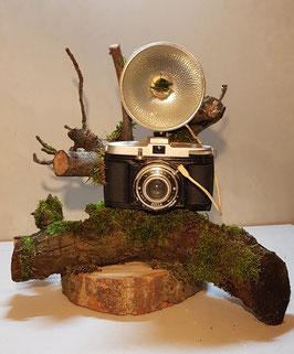 Camera & Natuur 1