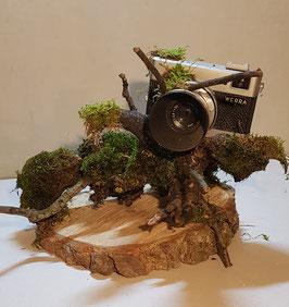 Camera & Natuur 2