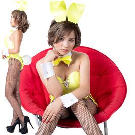 バニーガール 衣装 9点セット【イエロー】飾り付タイプ