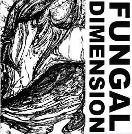 Fungal Dimension - Deconica/Phellinus - LP 2021 - AR 043