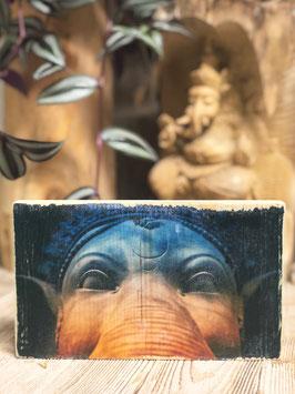 Ganesha Spirit