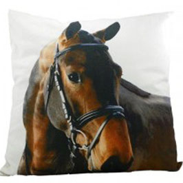 Kissen Pferd