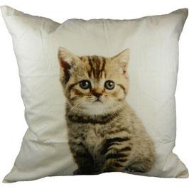 Kissen mit sitzendem Kätzchen