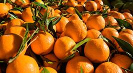 Combinado de 10kg. Naranja de Mesa + 5kg. de Clementinas
