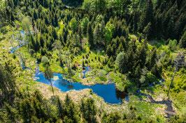 Natur Bayerwald