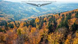 Herbst im Bayerwald 2