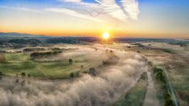 Natur im Morgennebel