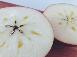 無農薬りんご 「サンふじ」