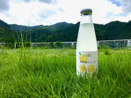 桂木柚子ソーダ