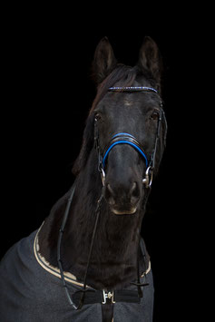 Blue Swarovski
