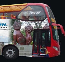 Bus Turístico de Cali