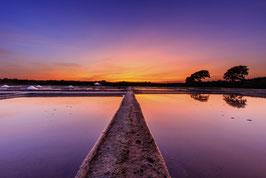 Sunset sur les marais Alu Dibond 30*45Cm