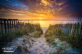 Tableau photo Alu-Dibond - Coucher de soleil sur les dunes de Lanseria