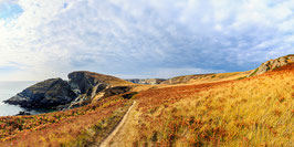 Tableau photo Alu-Dibond  Panoramique - La côte sauvage de Belle île à l'automne.