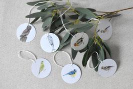 Geschenk-anhänger Vögel