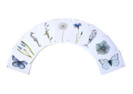 Postkarten blaue Serie