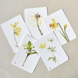 Postkarten gelb