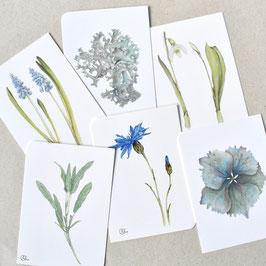 Postkarten grau-blaue