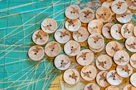 Kokosnuß, Innenborke, Schwalbe, klein