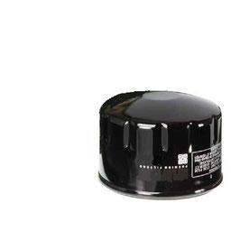 1013034A Filtro olio
