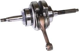 1009287A Albero motore