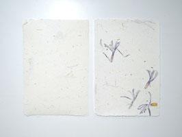 A5, Büttenpapiere - blaue Prachlilie und Stroh