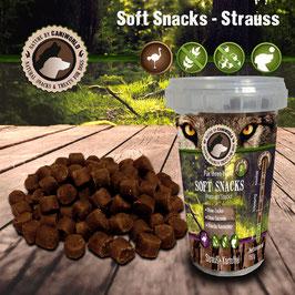 Soft Snacks Strauß 150g
